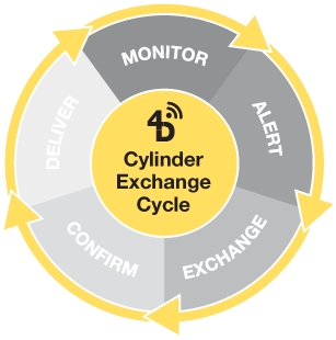 4d-circle